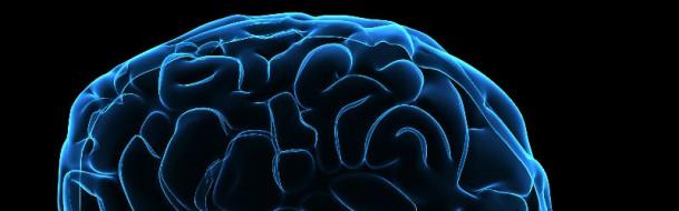 blue-brain-609x190